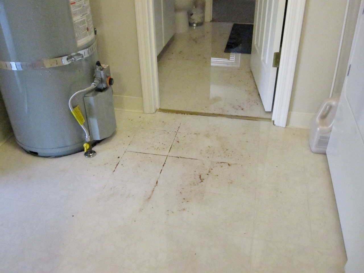 how to fix flooded toilet