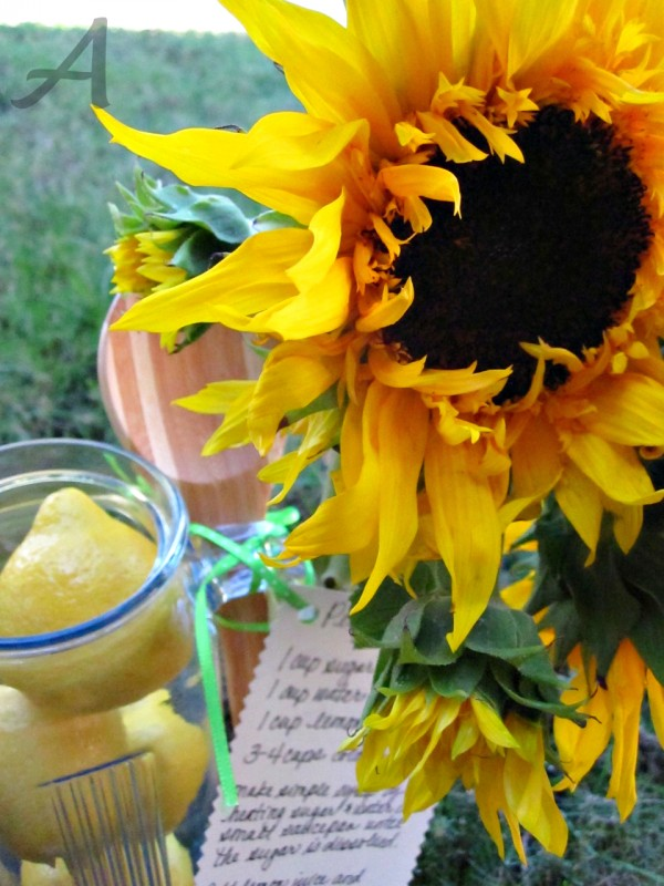This recipe for the best homemade lemonade is super easy and only requires 3 ingredients! It is the perfect beverage for a party, BBQ or even as part of a hostess gift! | Ask Anna