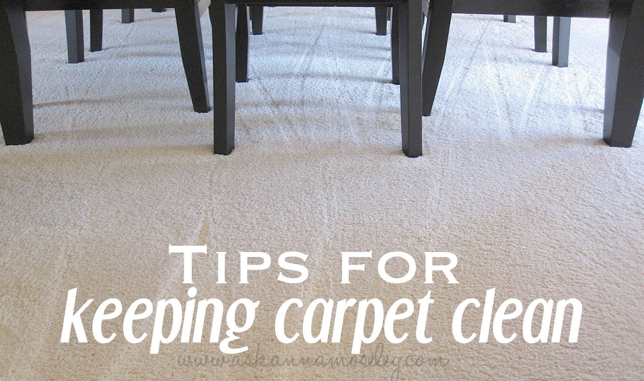 I Don T Know About You But Can Afford To Have My Carpets Cleaned More Than Once A Year So How Do Keep White Carpet