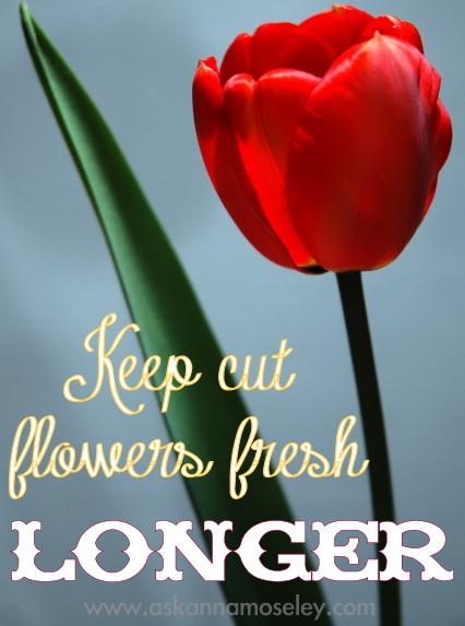 Vinegar Uses: How to Get Rid of Deer & Keeping Flowers Fresh