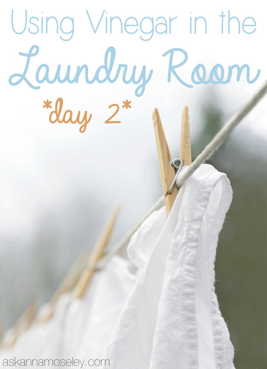 Vinegar Tips – Laundry, Day 2