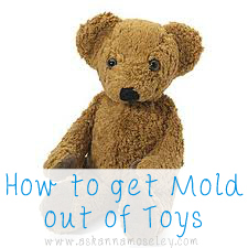 How to get rid of Mold on Toys