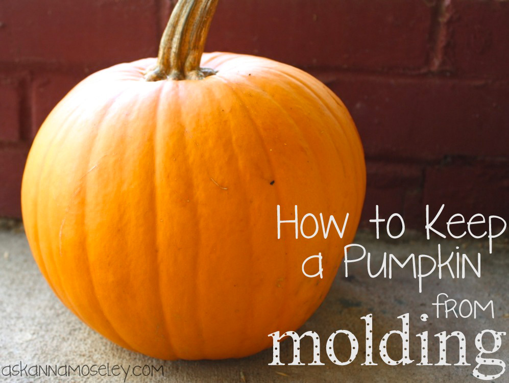 How to Keep Pumpkins from Molding After Carving