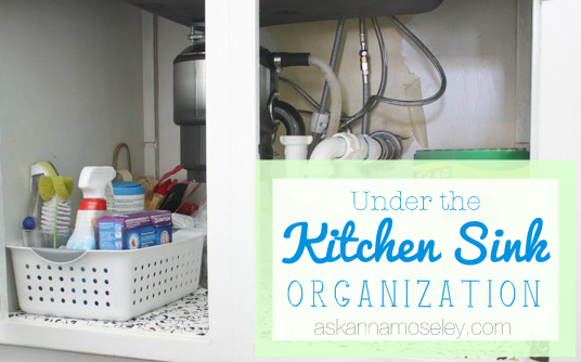 Under the Kitchen Sink Organization - Ask Anna