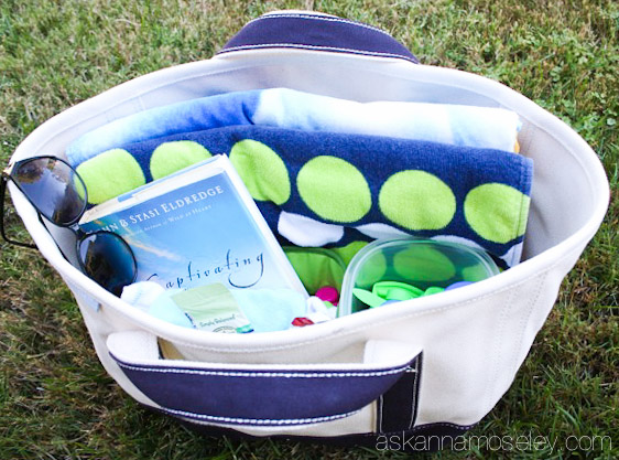 Lands' End canvas storage totes - Ask Anna
