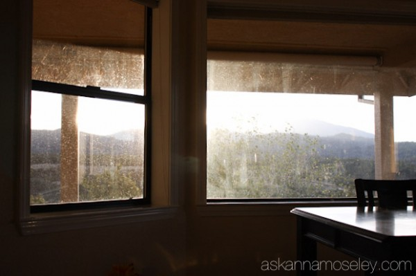 Fall cleaning ~ how to wash windows - Ask Anna