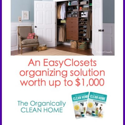 Spring Cleaning Challenge & Tips from the Pros