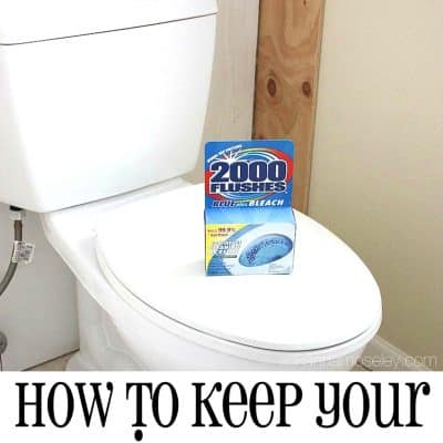 An Easy Toilet Cleaning Solution for a Crazy Busy Season