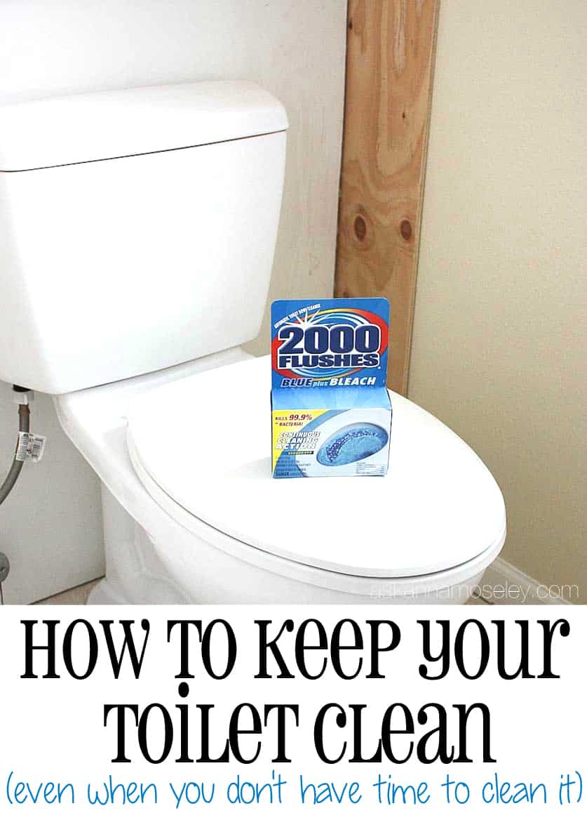 An Easy Toilet Cleaning Solution Ask Anna