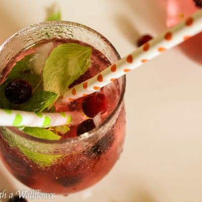 Cranberry Mint Lime Sparkling Water