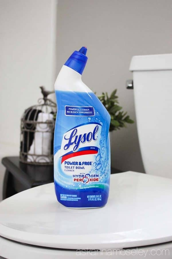 My all time favorite toilet bowl cleaner - Ask Anna