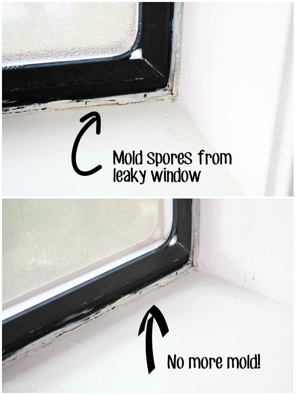 The safest way to clean and prevent mold from coming back - Ask Anna