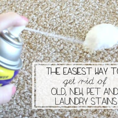 How to get Stains out of Carpet (old, new & pet stains!)