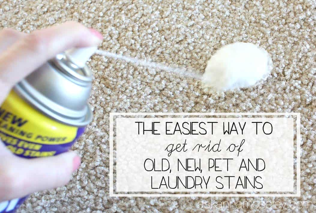How To Get Stains Out Of Carpet Old New Amp Pet Stains