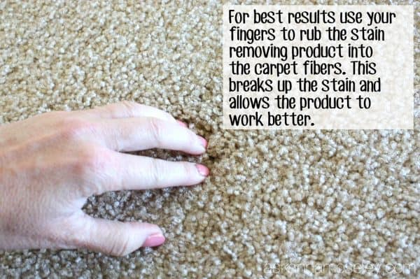 How to remove carpet stains (old, new and pet stains!) - Ask Anna