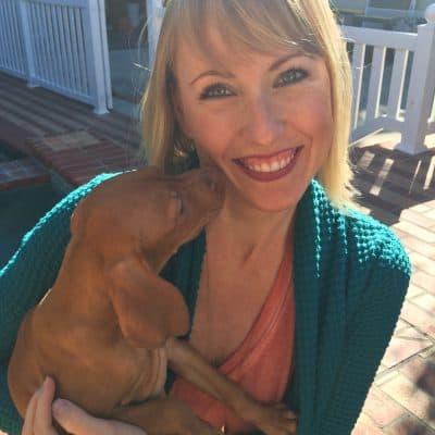 Meet Scarlett, our Vizsla Puppy!!!